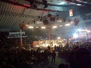 Anderson Silva (kickboxer) - Anderson Silva vs. Cătălin Moroșanu in 2012