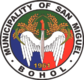 Official seal of San Miguel