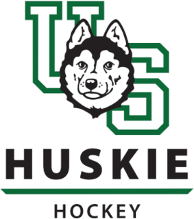 Saskatchewan Huskies womens ice hockey