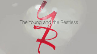 <i>The Young and the Restless</i> television series