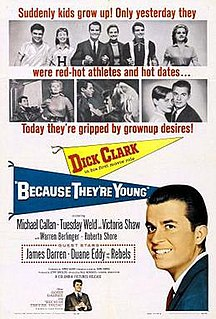 1960 film by Paul Wendkos