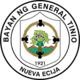 Official seal of General Tinio