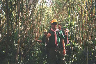Venturer Scout - Hamrun Venture Scouts, Malta, during an Expedition