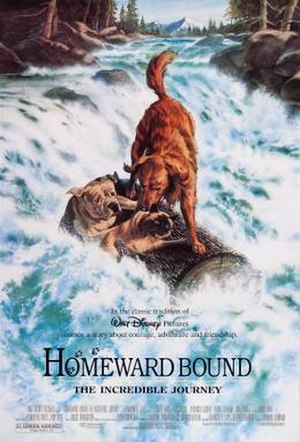 Homeward Bound: The Incredible Journey - Theatrical release poster