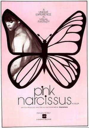 Pink Narcissus - Image: Pink Narcissus Film Poster