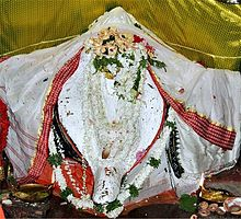 Maa Samaleswari in White Attire