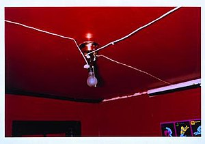 The Red Ceiling by William Eggleston.jpg