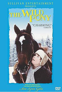 The Wild Pony DVD Cover.jpg
