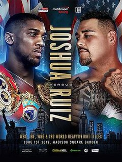 Anthony Joshua vs. Andy Ruiz Jr. Boxing competitions