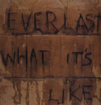 What It's Like - Image: Everlast What It's Like