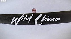 Wild China title card