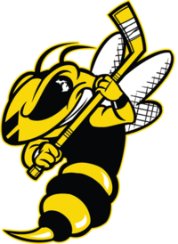 Battle Creek Rumble Bees.png