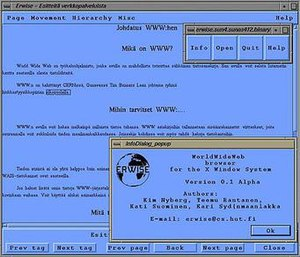Screenshot of the browser