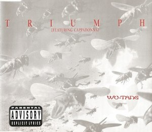 Triumph (song) - Image: Triumph by Wu Tang Clan commercial European release