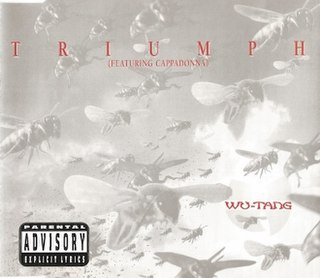 Triumph (song) 1997 single by Wu-Tang Clan