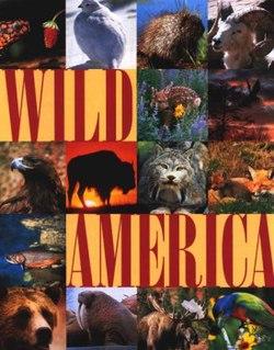 <i>Wild America</i> (TV series)