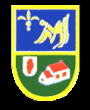 Kilmacud Crokes GAA - Image: Kilmacud crokes logo