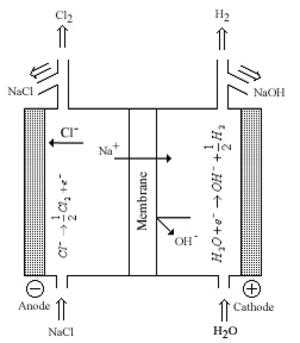 Nafion - A chlor-alkali cell