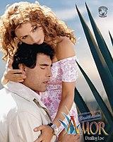 Tv Novelas Destilando Amor Capitulo 160