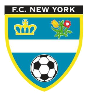 F.C. New York defunct soccer team in the United States