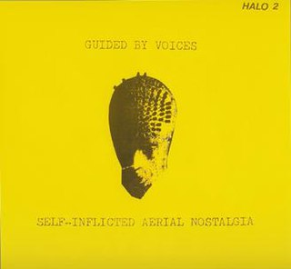 <i>Self-Inflicted Aerial Nostalgia</i> 1989 studio album by Guided by Voices