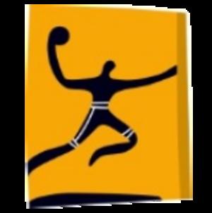 Handball at the 2004 Summer Olympics - Image: Handball, Athens 2004
