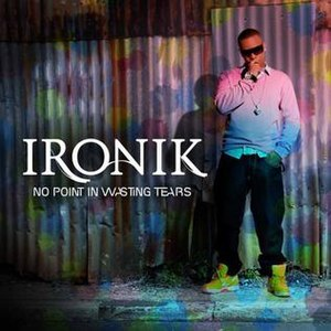 No Point in Wasting Tears - Image: Ironik No Point In Wasting Tears
