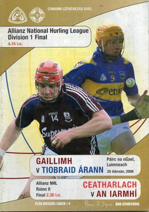 2008 National Hurling League - Image: Final 2008 National Hurling League