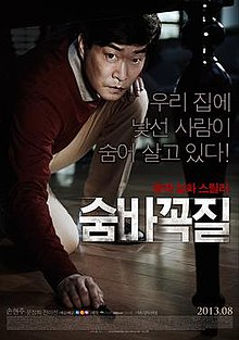 Hide and Seek (2013) poster.jpg