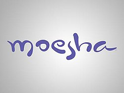 250px-Moesha_Title_Card.jpg