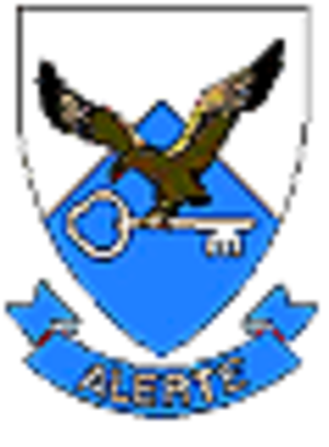 Test Flight and Development Centre SAAF - Image: TFDC badge