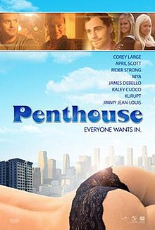 The Penthouse (2010 film).jpg