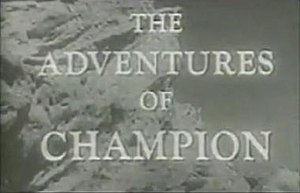 The Adventures of Champion (TV series) - The Adventures of Champion Titlecard