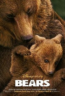 Bears 2014 film.jpg