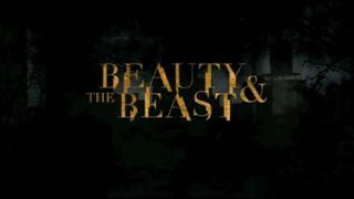 <i>Beauty & the Beast</i> (2012 TV series)