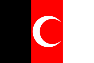 Afghanistan–Turkey relations - Herat flag of 1930 resembles Turkey's current flag.