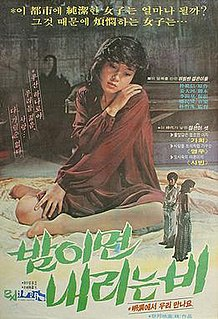 <i>The Rain at Night</i> 1973 film by Park Cheol-su