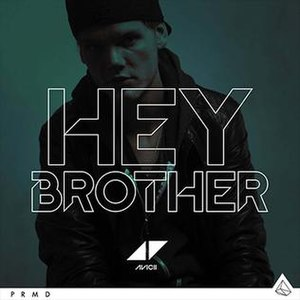 Hey Brother - Image: Avicii Hey Brother