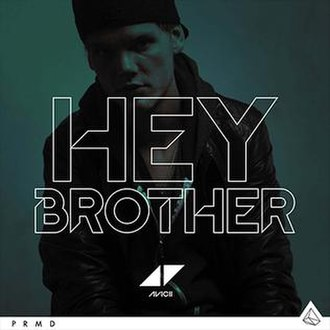 Avicii — Hey Brother (studio acapella)