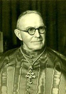 John DAlton Irish Cardinal of the Roman Catholic Church and Archbishop of Armagh