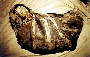 Mummy Juanita -  Mummy Juanita's body before unwrapping of her bundle.