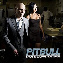 Pitbull - Shut It Down (Official Single Cover).jpg