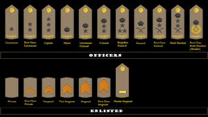 Saudi Royal Guard Regiment - Insignia for different ranks