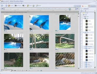Adobe Photoshop Album - Image: Adobe Photoshop Album screenshot