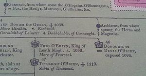 Clan McGrath - The Royal Lineage of the Clan McGrath