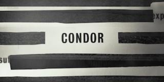 <i>Condor</i> (TV series) 2018 American thriller television series