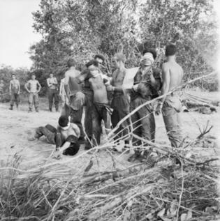 North Vietnamese soldiers captured at FSB Balmoral May 1968 (AWM CRO680575VN)