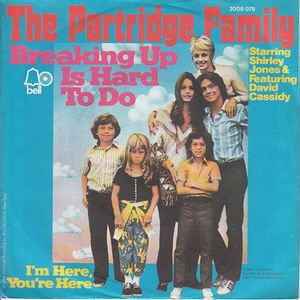 Breaking Up Is Hard to Do - Image: Breaking Up Is Hard to Do Partridge Family