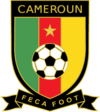 100px-Cameroon_2010crest.png