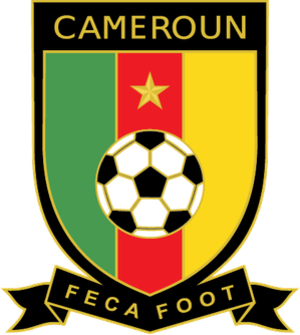 Cameroon national football team - Image: Cameroon 2010crest